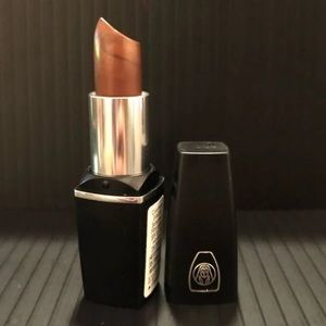 Oil of Olay Colormoist Lipstick -Bronze Reflection